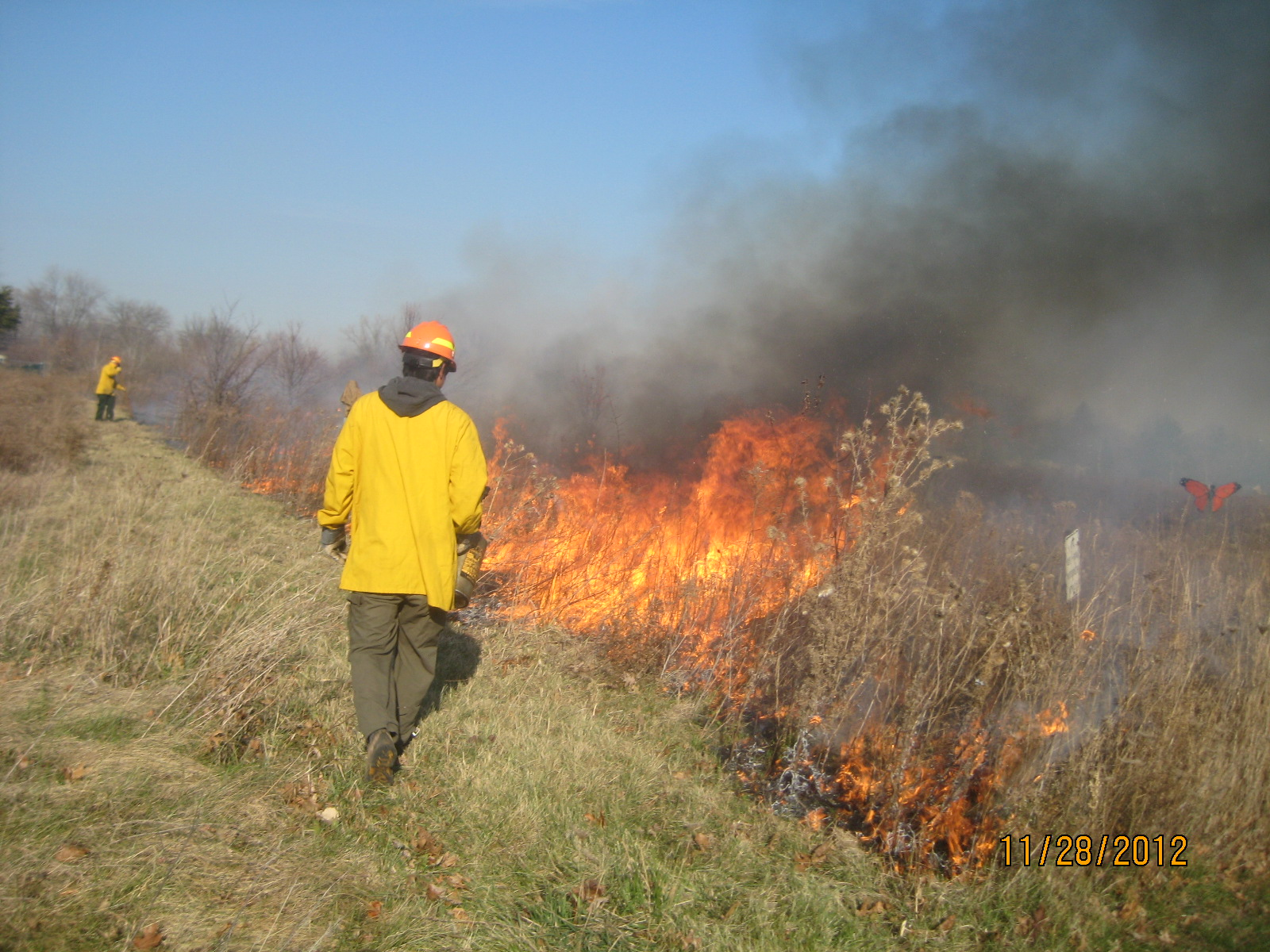 Burning the prairie restoration